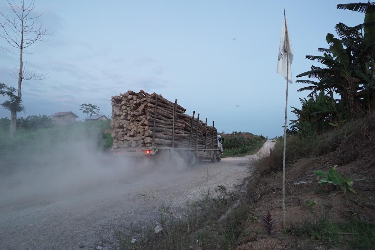 LoggingTruck1200.jpg