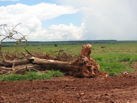 san-pedro-paraguay-feb-2008-127.jpg